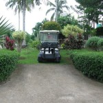 Golf cart used to tour foreign and local guests of Longscore gamefarm